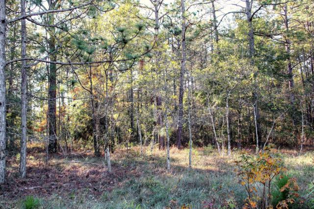 3 Deer Run Road, Carolina Shores, NC 28467 (MLS #100141565) :: Century 21 Sweyer & Associates