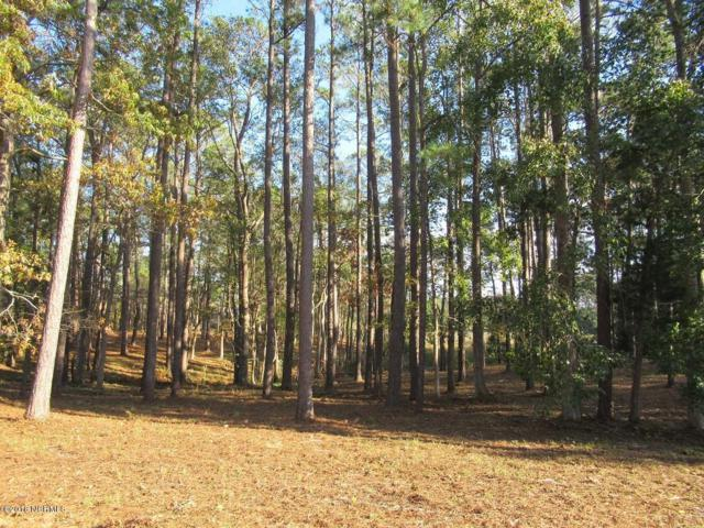 6491 Walden Pond Lane, Southport, NC 28461 (MLS #100141575) :: RE/MAX Essential