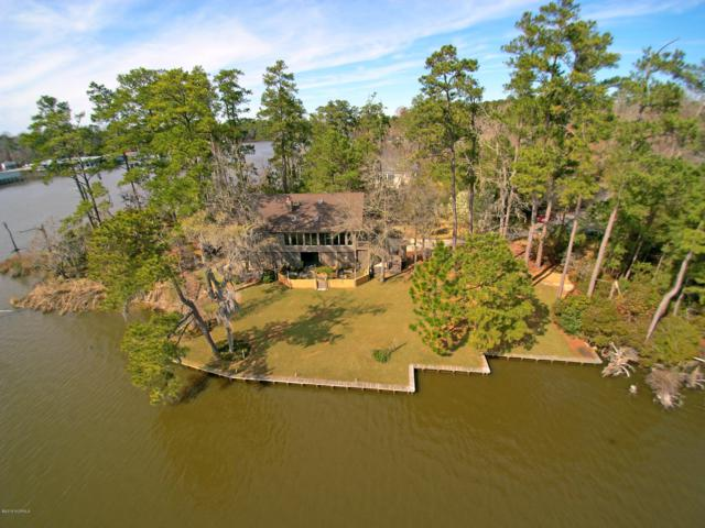 111 Island Lane, Washington, NC 27889 (MLS #100141990) :: Century 21 Sweyer & Associates