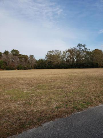 115 Cumberland Street, Newport, NC 28570 (MLS #100142524) :: Vance Young and Associates