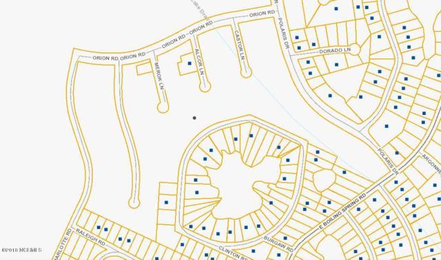 425 Acres, Boiling Spring Lakes, NC 28461 (MLS #100142530) :: Terri Alphin Smith & Co.