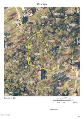 336 Osprey Point Drive, Sneads Ferry, NC 28460 (MLS #100142705) :: Century 21 Sweyer & Associates