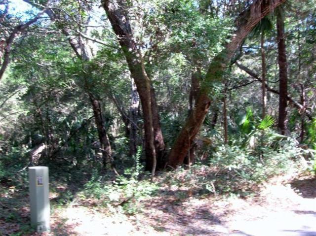 17 Fort Holmes Trail, Bald Head Island, NC 28461 (MLS #100142865) :: The Bob Williams Team