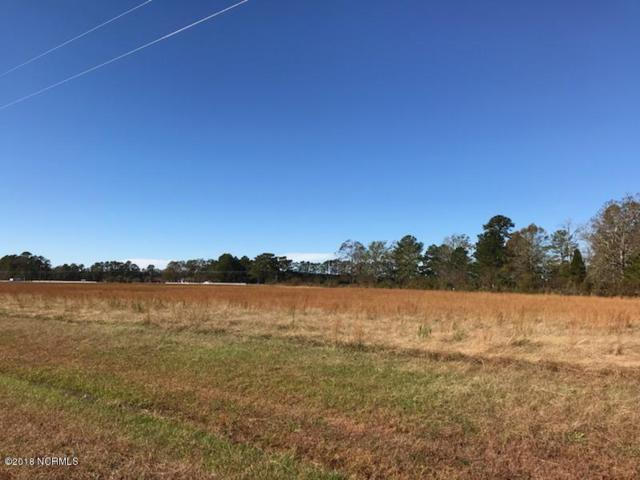 Lot 56 North Pointe Drive, Belhaven, NC 27810 (MLS #100142936) :: The Keith Beatty Team