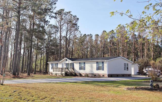 410 Clearwater Drive, Newport, NC 28570 (MLS #100142943) :: Century 21 Sweyer & Associates