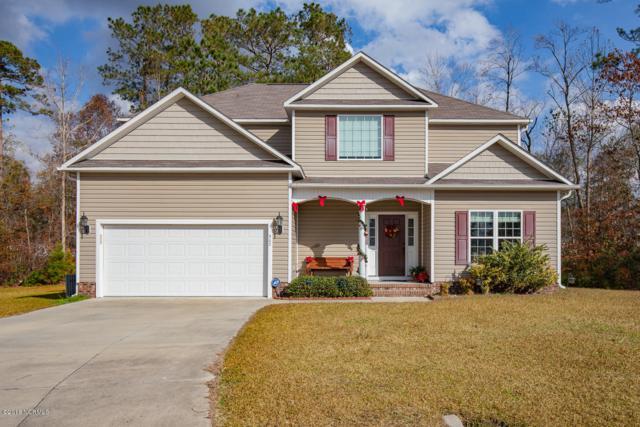 302 Pebble Island Lane, Jacksonville, NC 28546 (MLS #100142991) :: Harrison Dorn Realty