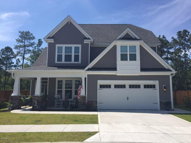 735 Antler Drive, Wilmington, NC 28409 (MLS #100143267) :: RE/MAX Essential