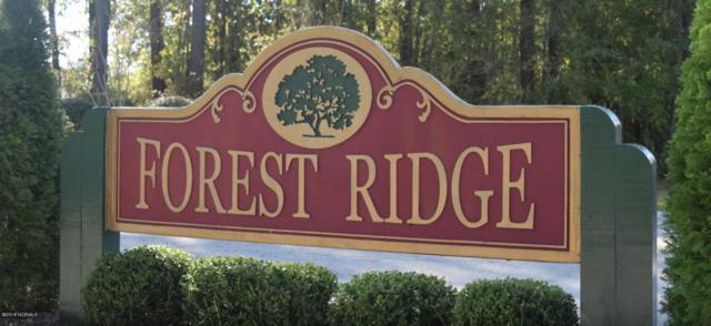 145 Forest Ridge Trail, Stella, NC 28582 (MLS #100143501) :: Courtney Carter Homes