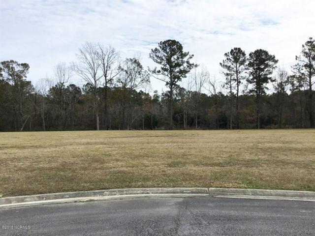 123 Davis Field Court, Oriental, NC 28571 (MLS #100143842) :: Lynda Haraway Group Real Estate