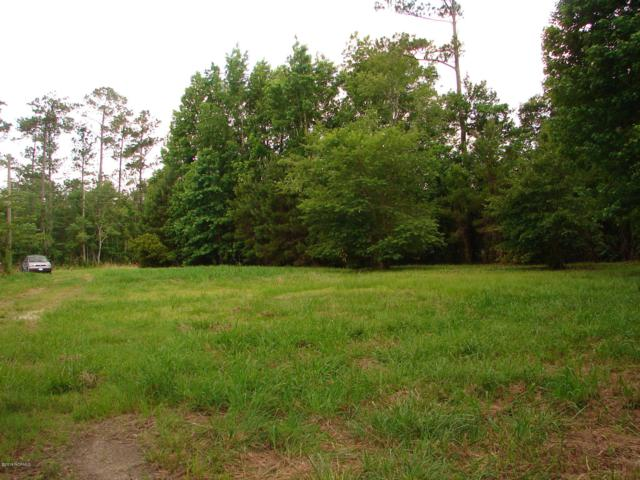 917 Old Folkstone Road, Sneads Ferry, NC 28460 (MLS #100143929) :: The Keith Beatty Team