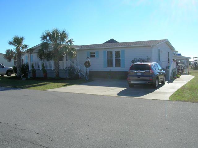 225 Blue Goose Lane, Newport, NC 28570 (MLS #100144882) :: Coldwell Banker Sea Coast Advantage