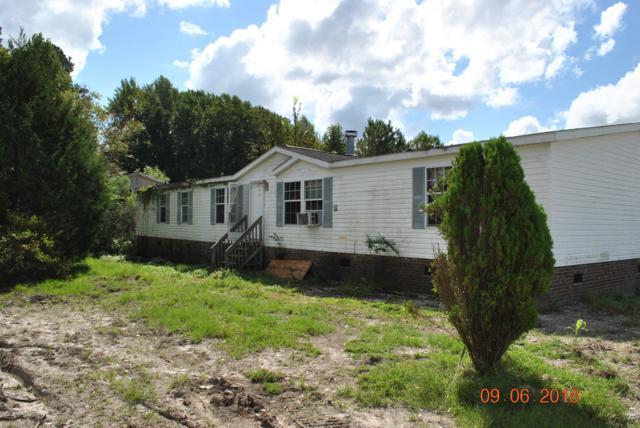 424 Hadley Collins Road, Maysville, NC 28555 (MLS #100145250) :: RE/MAX Elite Realty Group
