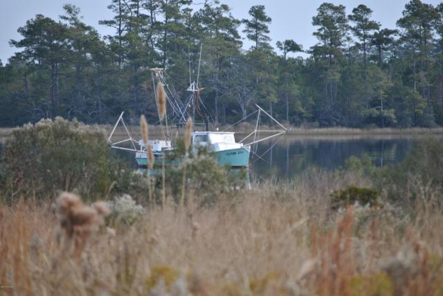 149 Mill Landing Point Road, Newport, NC 28570 (MLS #100145272) :: Berkshire Hathaway HomeServices Prime Properties