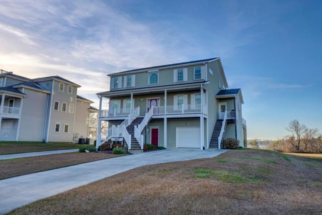 167 Big Hammock Point Road, Sneads Ferry, NC 28460 (MLS #100145434) :: RE/MAX Elite Realty Group