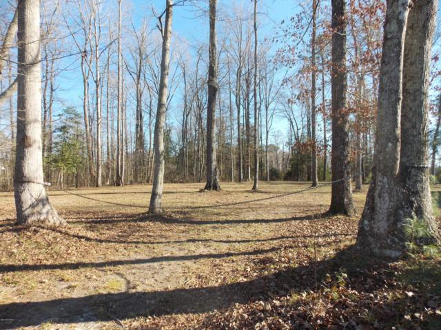 Lot 4 Peninsula Drive, Bath, NC 27808 (MLS #100145499) :: CENTURY 21 Sweyer & Associates