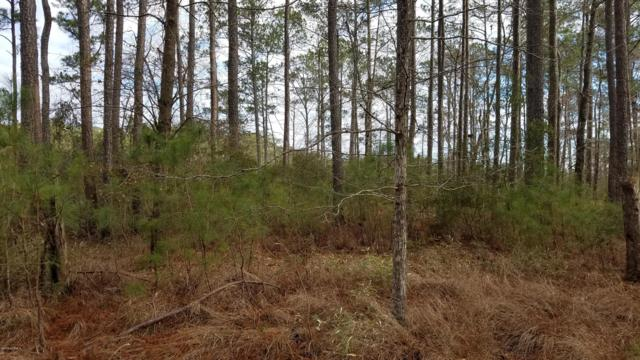 Lot 9 Pitch Kettle Court, Belhaven, NC 27810 (MLS #100146255) :: The Pistol Tingen Team- Berkshire Hathaway HomeServices Prime Properties