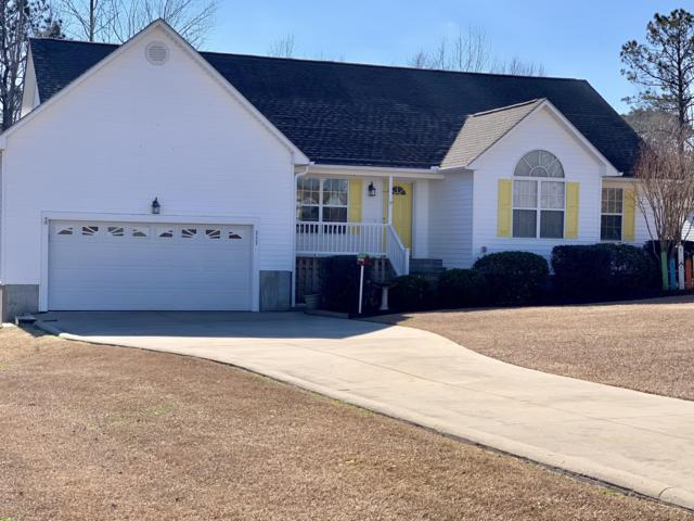 317 Appaloosa Court, Swansboro, NC 28584 (MLS #100146301) :: RE/MAX Elite Realty Group