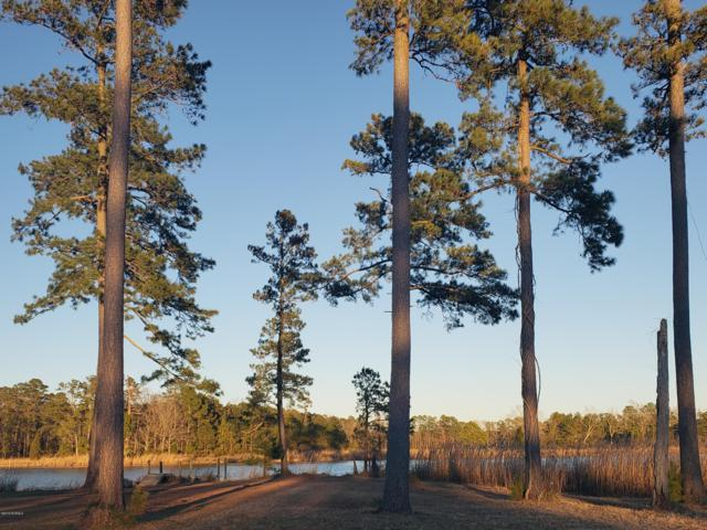 Lot 11 North Creek Drive, Belhaven, NC 27810 (MLS #100147067) :: RE/MAX Essential