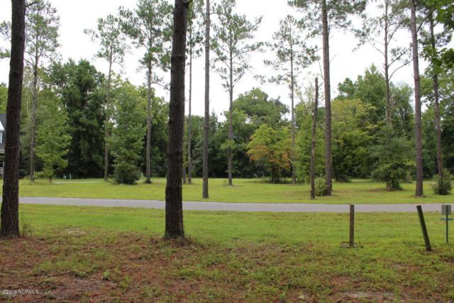 408 Burgee Court, Castle Hayne, NC 28429 (MLS #100147168) :: RE/MAX Essential