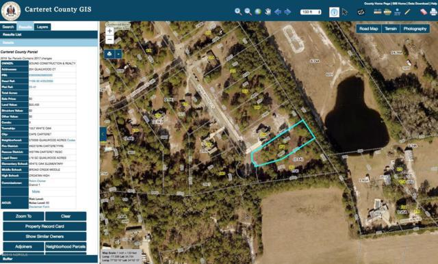 204 Quailwood Court, Cape Carteret, NC 28584 (MLS #100147422) :: Courtney Carter Homes