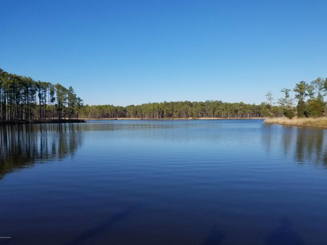 186 Creek Drive, Aurora, NC 27806 (MLS #100147452) :: RE/MAX Essential