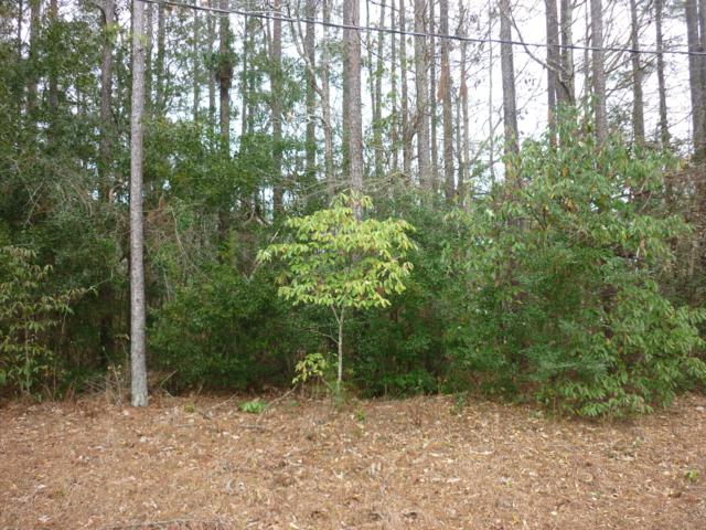 206 Sandy Run, Swansboro, NC 28584 (MLS #100147694) :: The Cheek Team