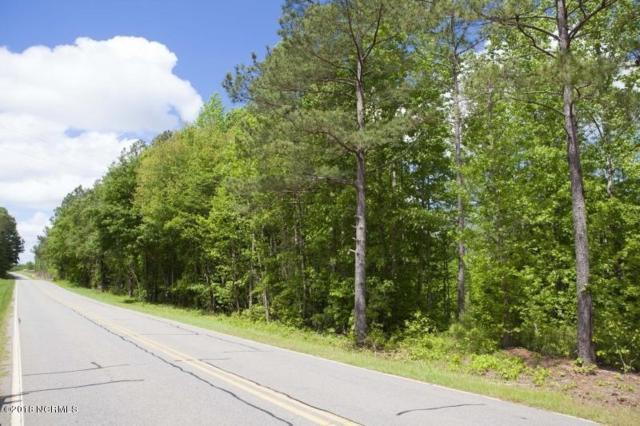 1 Taylors Gin Road, Castalia, NC 27816 (MLS #100147865) :: Lynda Haraway Group Real Estate