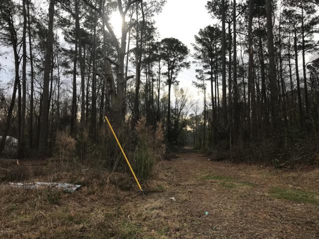 271 E Pleasant Hill Road, Pink Hill, NC 28572 (MLS #100148005) :: Harrison Dorn Realty