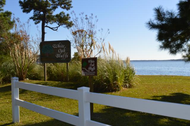 239 White Oak Bluff Road, Stella, NC 28582 (MLS #100148016) :: Berkshire Hathaway HomeServices Prime Properties