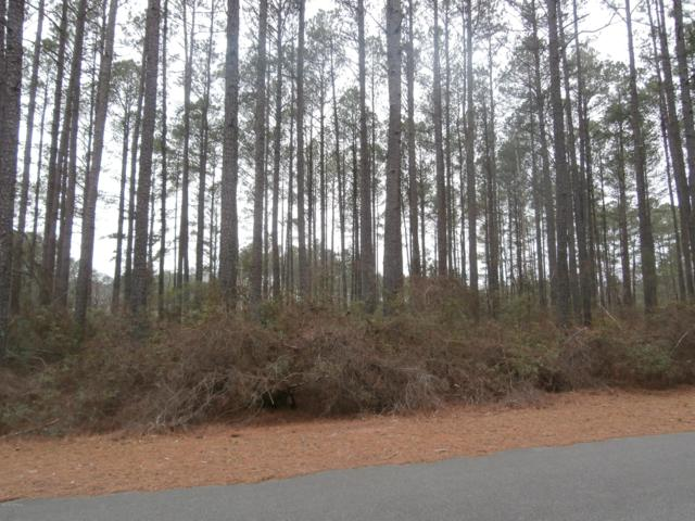 30080 Loblolly Court, Wagram, NC 28396 (MLS #100148456) :: Donna & Team New Bern