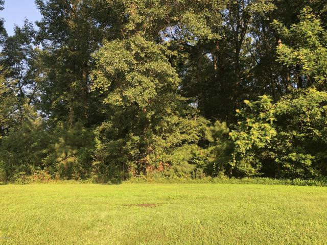 Lot 14 Northwinds Way, Washington, NC 27889 (MLS #100148655) :: Courtney Carter Homes