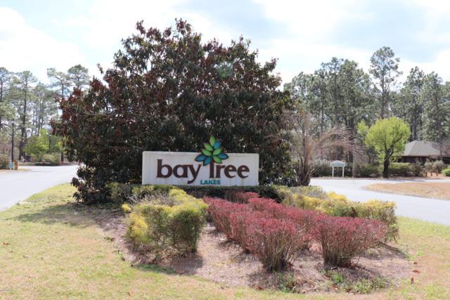 198 Spring Branch Drive, Harrells, NC 28444 (MLS #100149010) :: RE/MAX Essential