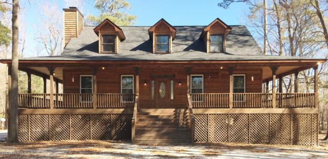 901 Riverview Drive, Burgaw, NC 28425 (MLS #100149151) :: Berkshire Hathaway HomeServices Prime Properties