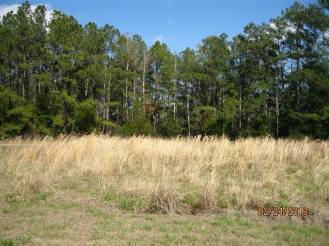 211 Ida Bell Lane, Beaufort, NC 28516 (MLS #100149196) :: Lynda Haraway Group Real Estate