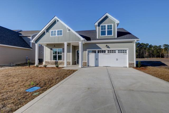 1315 Teddy Road, Castle Hayne, NC 28429 (MLS #100149225) :: The Keith Beatty Team