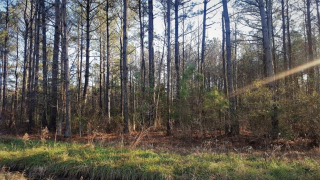 Lot 25 Kel Ash Road, Rocky Point, NC 28457 (MLS #100149452) :: RE/MAX Essential