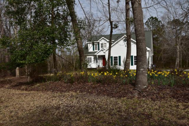 951 Royal Tern Drive, Hampstead, NC 28443 (MLS #100149490) :: Courtney Carter Homes