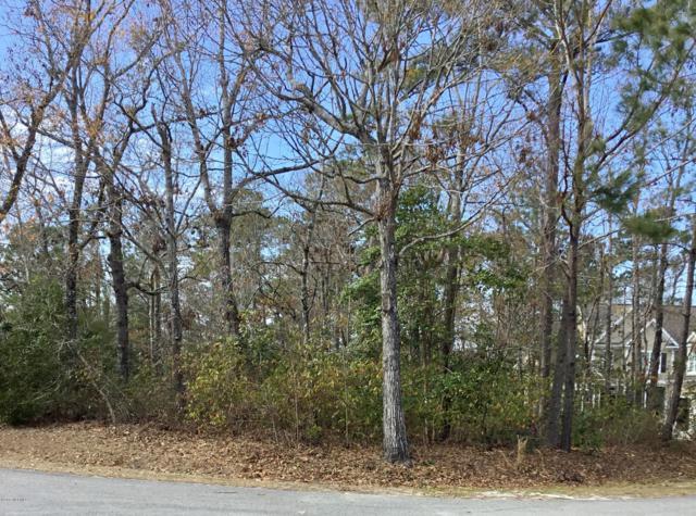 56 W Goldeneye Landing, Hampstead, NC 28443 (MLS #100149929) :: RE/MAX Essential