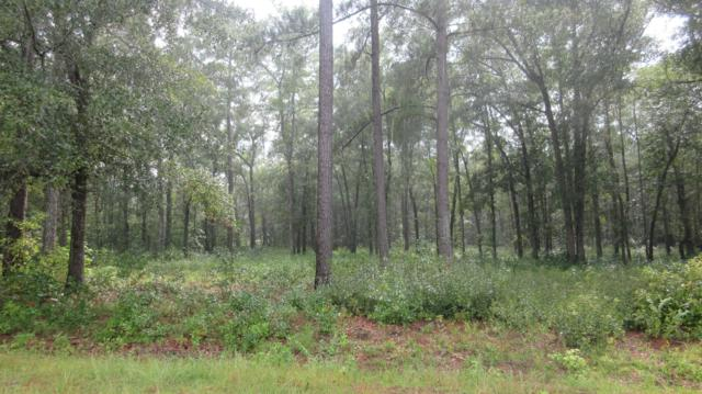 5 Carnostie Drive, Laurinburg, NC 28352 (MLS #100150016) :: The Keith Beatty Team