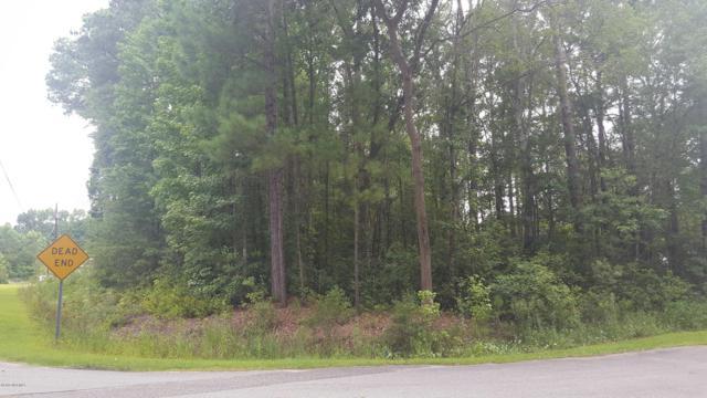 3801 Worthdale Drive, Castle Hayne, NC 28429 (MLS #100150162) :: RE/MAX Essential