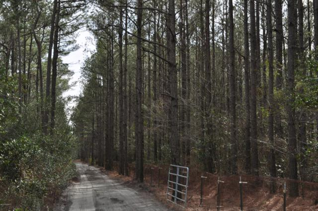 000 Haw Branch Road, Beulaville, NC 28518 (MLS #100150285) :: Harrison Dorn Realty