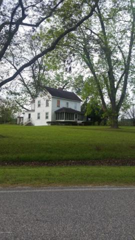 4714 Long Branch Swamp Rd, Green Sea, SC 29545 (MLS #100150572) :: Donna & Team New Bern