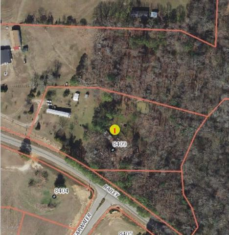 8409 Bailey Road, Sims, NC 27880 (MLS #100151014) :: Courtney Carter Homes