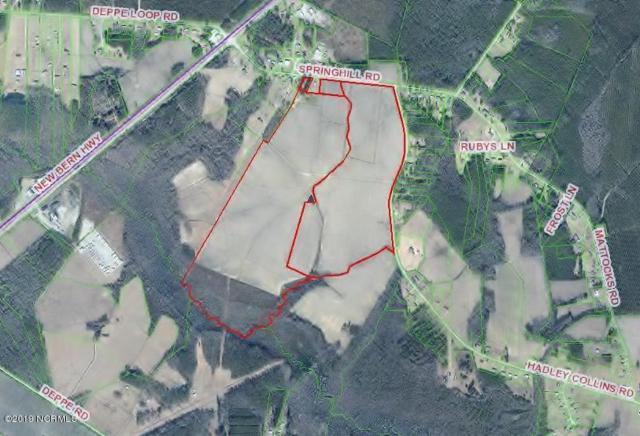 0 Springhill Road, Maysville, NC 28555 (MLS #100151151) :: Donna & Team New Bern