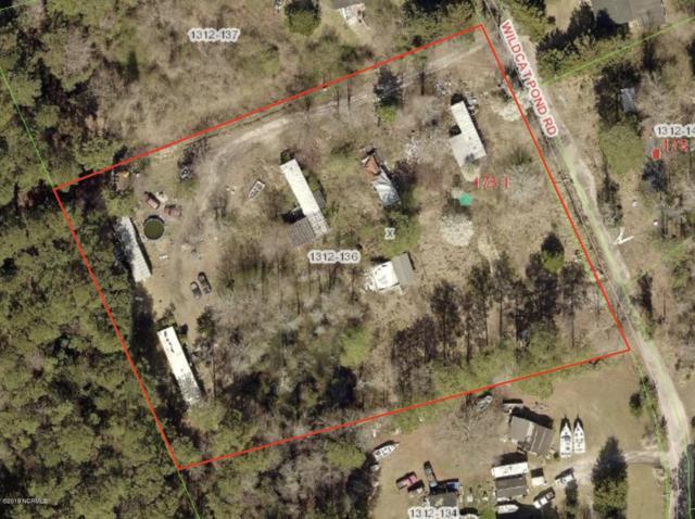 175 Wildcat Pond Road, Hubert, NC 28539 (MLS #100151173) :: Century 21 Sweyer & Associates