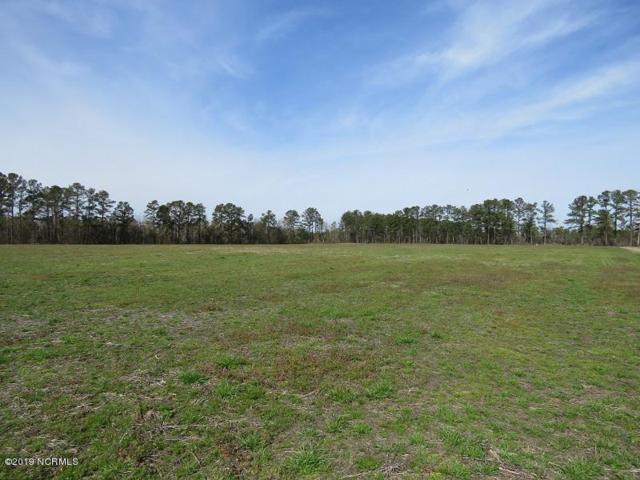 379 Merritt Road, Chadbourn, NC 28431 (MLS #100151189) :: SC Beach Real Estate