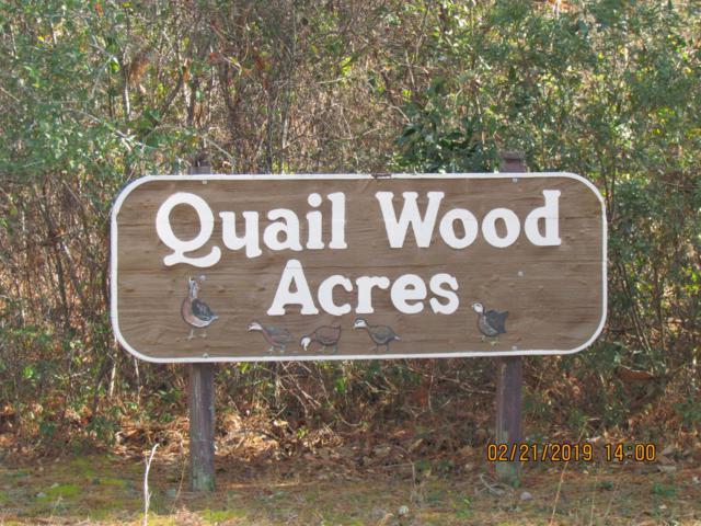 212 Quailwood Court, Cape Carteret, NC 28584 (MLS #100151583) :: Century 21 Sweyer & Associates
