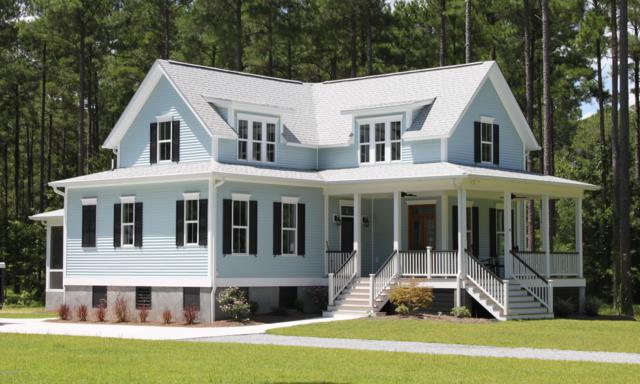 41 Cassie May Boulevard, Oriental, NC 28571 (MLS #100151620) :: Coldwell Banker Sea Coast Advantage