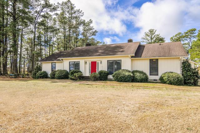 115 Old Cottage Road, Belhaven, NC 27810 (MLS #100151640) :: RE/MAX Essential