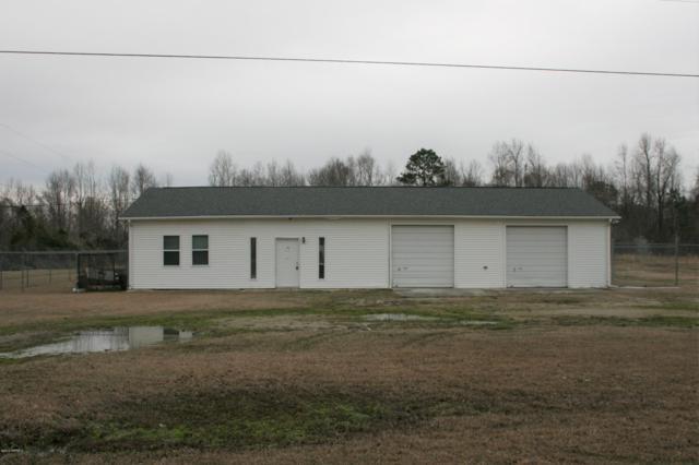 140 Penguin Lane, Jacksonville, NC 28546 (MLS #100151697) :: Century 21 Sweyer & Associates
